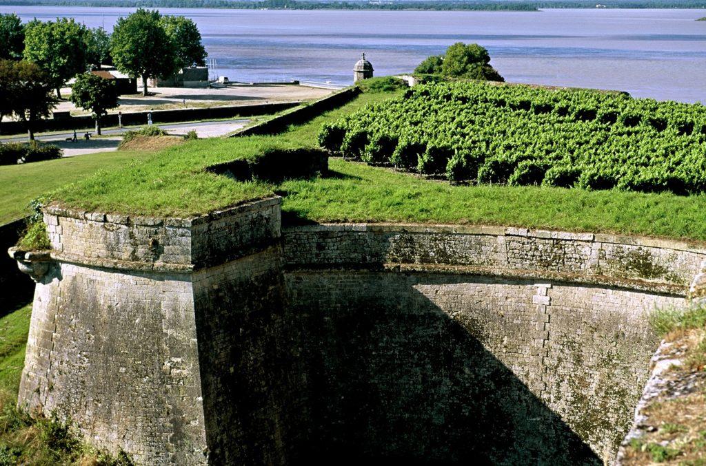 Vignoble de la Citadelle de Blaye