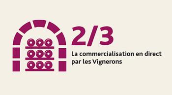 infographie-Blaye-Cotes-de-Bordeaux-commercialisation