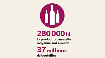infographie-Blaye-Cotes-de-Bordeaux-production
