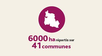 infographie-Blaye-Cotes-de-Bordeaux-superficie